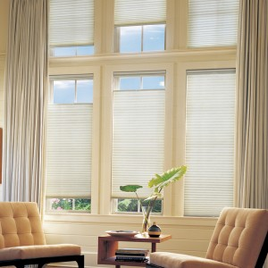 honey comb blinds (4)