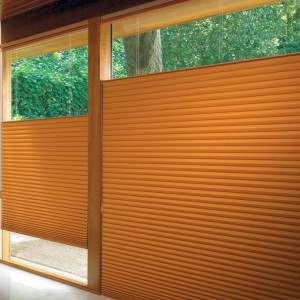pleated shades (2)